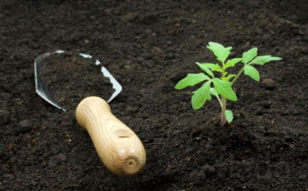 Садовая земля в мешках по 50 литров.