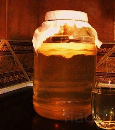 Чайный гриб - полезный домашний напиток