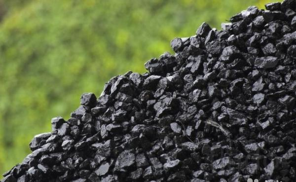Уголь тоннами и мешками также дрова сосна и береза