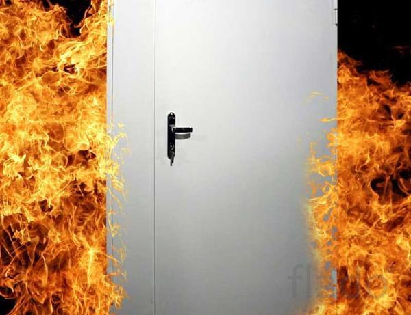 Противопожарные двери Металлические двери г. Пенза