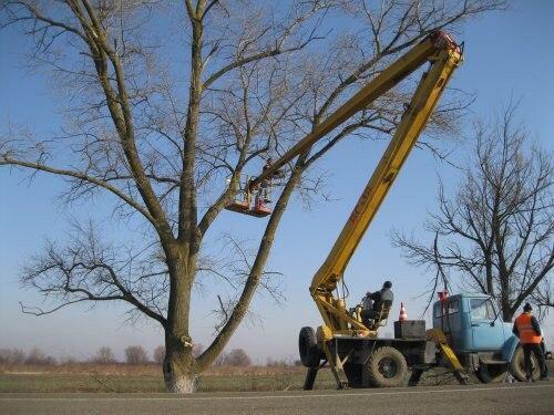 Опиловка Деревьев с помощью Автовышки в Подольске - Подольском районе