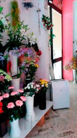 Продам магазин цветов в спб, цветы с доставкой в югорске