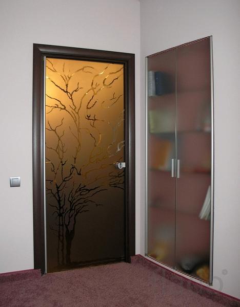 Стеклянные двери для дома, сауны и офиса.