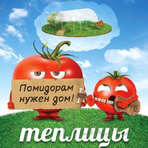 Теплицы из поликарбоната Александров
