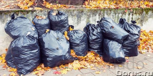 Вывоз листьев, веток, мусора в Омске