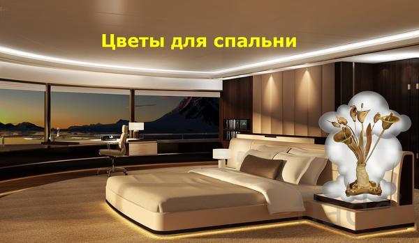 Санкт-Петербуг . Предметы интерьера для спальни . Цветы для спальни