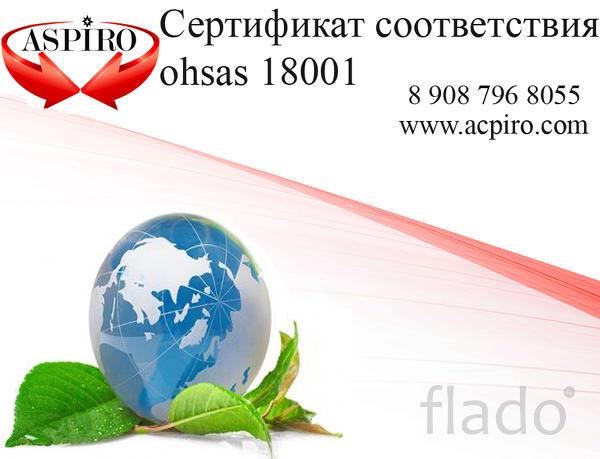 Сертификат OHSAS 18001 с реестром за сутки для Череповца