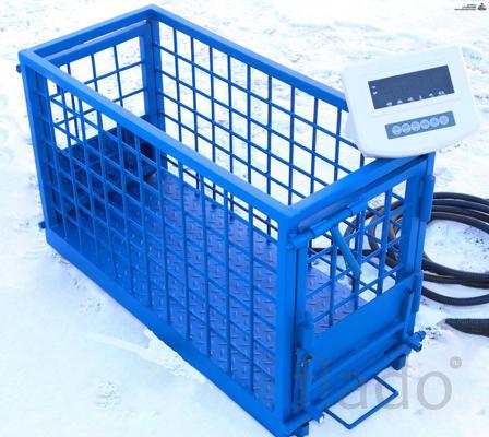 Весы для животных. Напольные весы для КРС ВП-С 1500 кг (1.5 тонны)