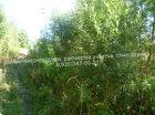 Расчистка участка.Покос травы,бурьяна.Спил дерева.