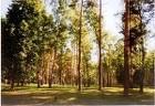 Продается участок в д.Енино, Серпуховского района