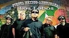 """Los Lobos / Come On, Let""""s Go / 1987 / Promo / Волки"""