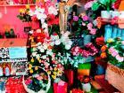 Магазин цветов, Италия Анкона