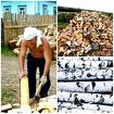Дрова колотые с доставкой в Челябинске