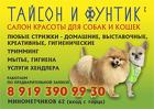 Стрижка собак и кошек в салоне