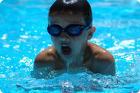 Обучение плаванию в СПБ