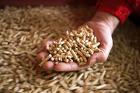 Реализуем пеллеты и евродрова-отличная альтернатива обычным дровам