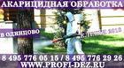 Обработка дачного участка от клещей (уничтожение клещей) в Одинцово