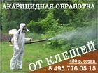 Акарицидная обработка участка от клещей комаров в Красногорске