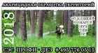 Обработка участка от иксодовых клещей в Ивантеевке