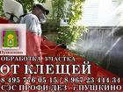Акарицидная обработка дачного участка от клещей в Пушкино. Профи-Дез