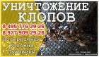 Уничтожение клопов,тараканов,блох,клещей/дезинсекция профи-дез сэс