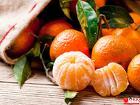 Сортировщик мандаринов, вахта с питанием