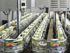 Изготовитель пищевой упаковки для соковой продукции (вахтовый метод)
