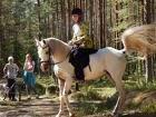 Верховая езда для взрослых и детей в Вырице, Гатчинский район