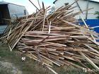дрова для бани сосновые обрезки