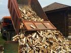 Купить дрова колотые береза