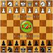 Обучение шахматам и шашкам. Зеленоград - область.