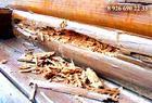 Заменить гнилые венцы в деревянном доме