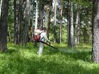 Обработка участка от клещей и комаров в Волоколамске