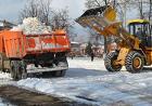 Услуги трактора (погрузка,расчистка,грунт, снег и тд)