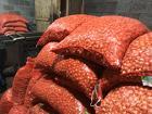 Лук севок от производителя Чувашии