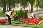 Рабочие на цветочные базы