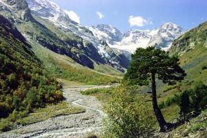 Впервые за 10 лет иностранцы смогут посетить Северную Осетию