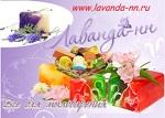 Лаванда-НН