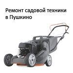 Ремонт садовой техники в Пушкино