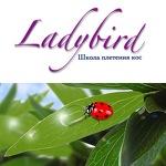 Школа плетения кос Ladybird
