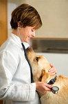 ветеринарная клиника лемурвет