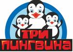 """Детский оздоровительный центр """"Три пингвина"""""""