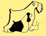 Стрижка собак и кошек в Астрахани. Все породы. Опытный грумер