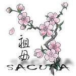 Компания Сакура
