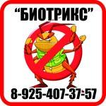Уничтожение домашних насекомых,клопов,крыс,блох в Ногинске и Электрост