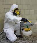 санобработка выведение клопов тараканов комаров клещей ос в Коломне