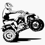 Kadrokids-прокат детских квадроциклов