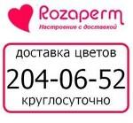 Rozaperm.ru