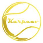 Школа тенниса Андрея Карпеева