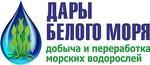 Дары Белого моря